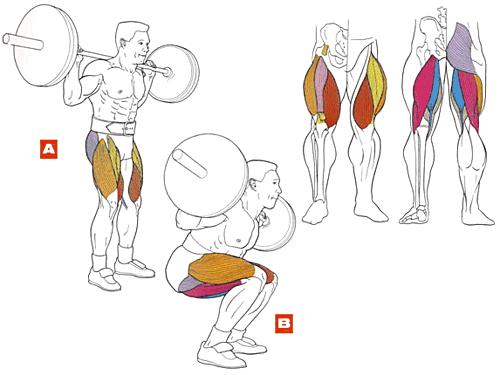 Как укрепить ноги