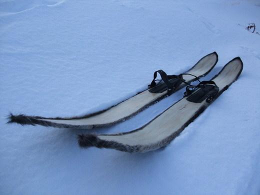 Правильно выбираем лыжи